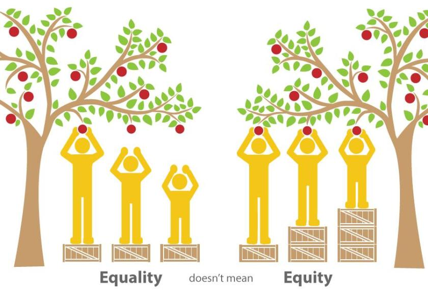 Equity vs Equality Apples